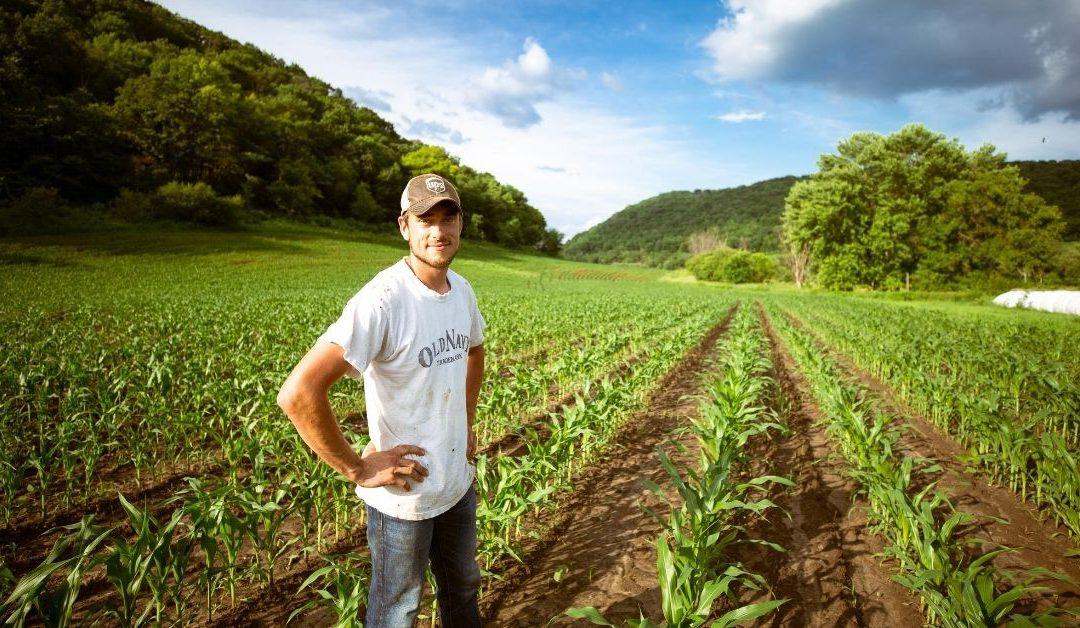 The God-Dream that Saved a Drought Stricken Farm